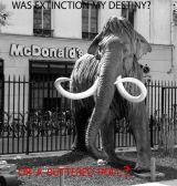 Mammoth Burger - by Terry Buchanan (UK)