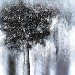 Tree of Life 1 - by Bhaskar Rao (India)