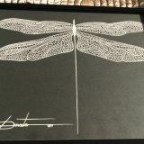 Dragonfly (15)