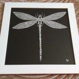 Dragonfly (16)