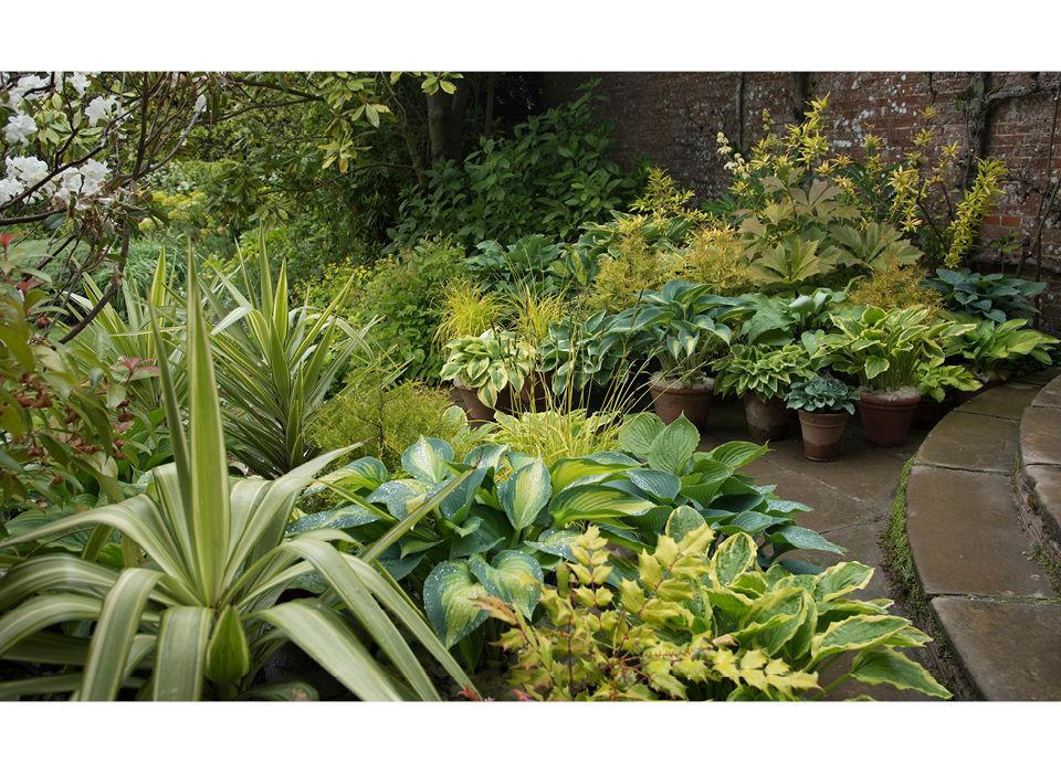 Blue Garden pots