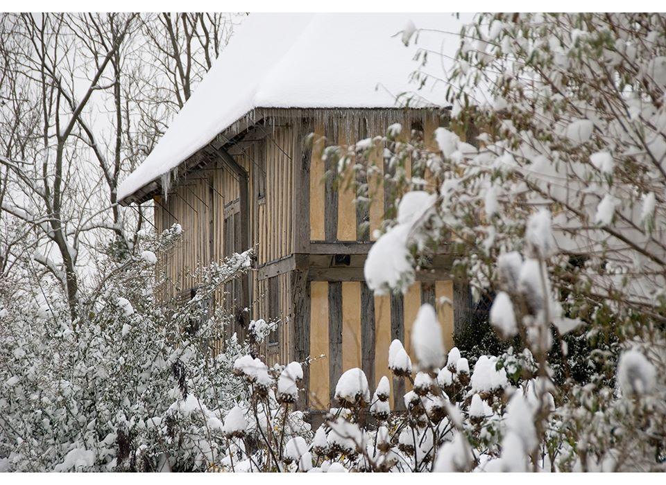 Gt Dixter in the Snow