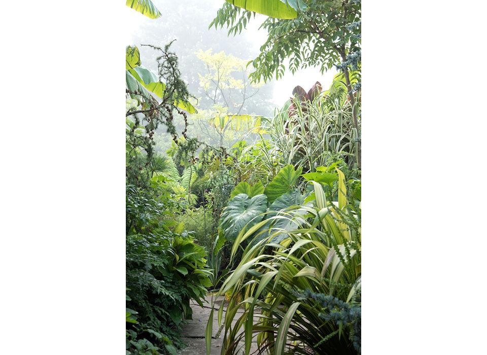 Exotic Garden early morning