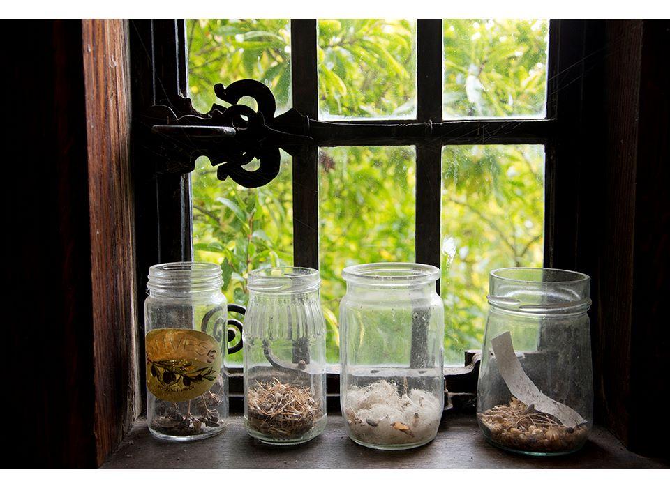 Jars of Seeds
