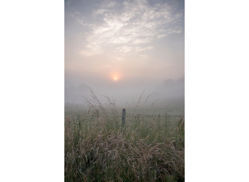 Misty morning across the fields
