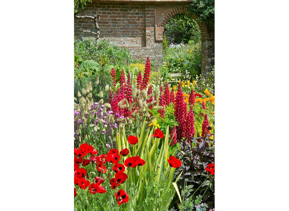 Pots in the Walled Garden