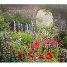 Walled Garden pots