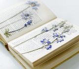 Library book & flowers