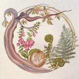 Woodland Dormouse & Foxgloves