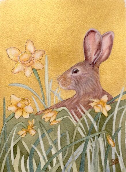 Young Hare & Daffodils