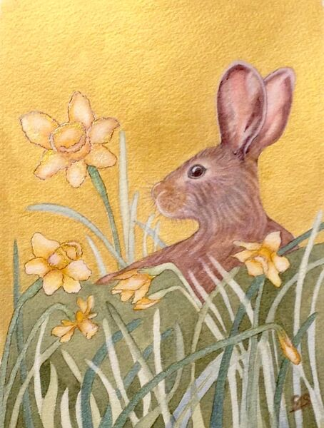 Hare in the Daffodils