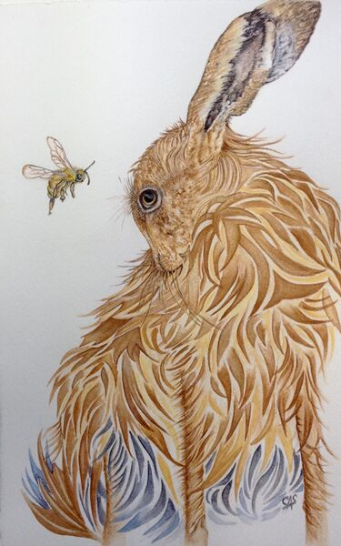 The Hare and the Honeybee