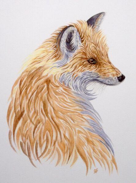 Bracken the Red Fox