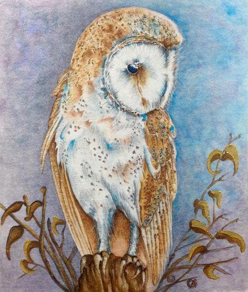 Golden Spirit - Barn Owl