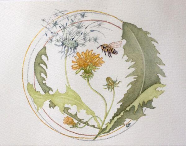 Dandelions & Honeybee