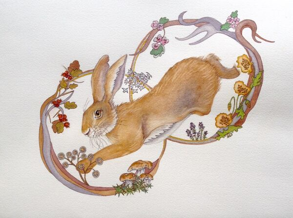 Jumping Wild Hare