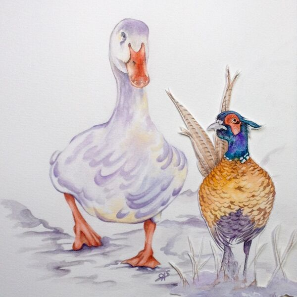 Marigold the Duck & Sprout the Pheasant