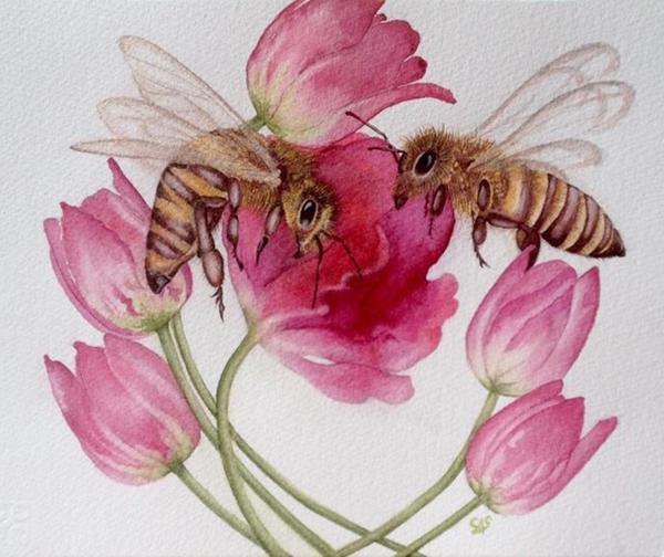 Honeybees & Tulips