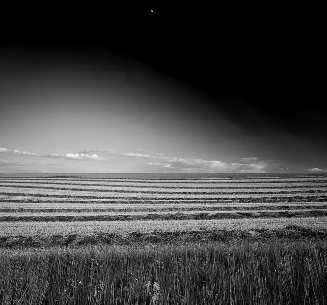 Half moon, Floezlingen