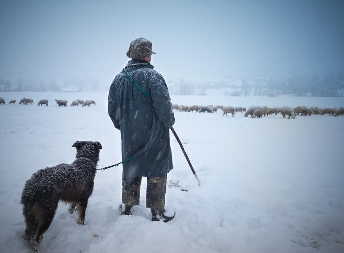 Shepherd, Mariazell