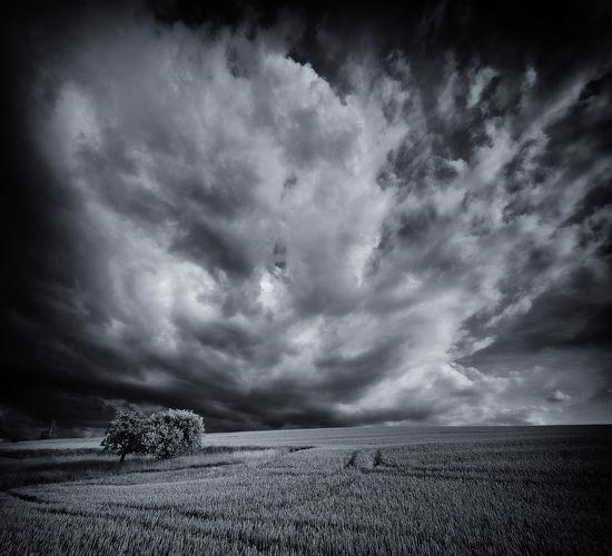 Cloudscape, Niedereschach