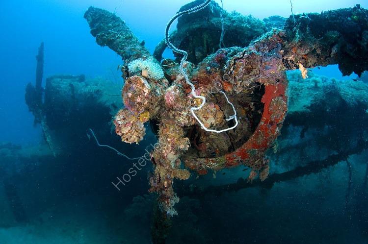 Mavis WW2 Sea Plane