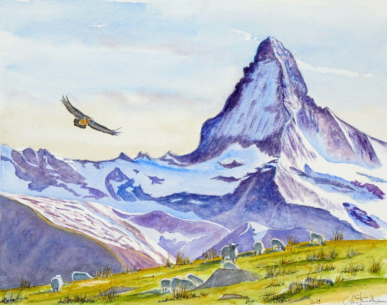 Cervin, moutons et gypaète - Matterhorn