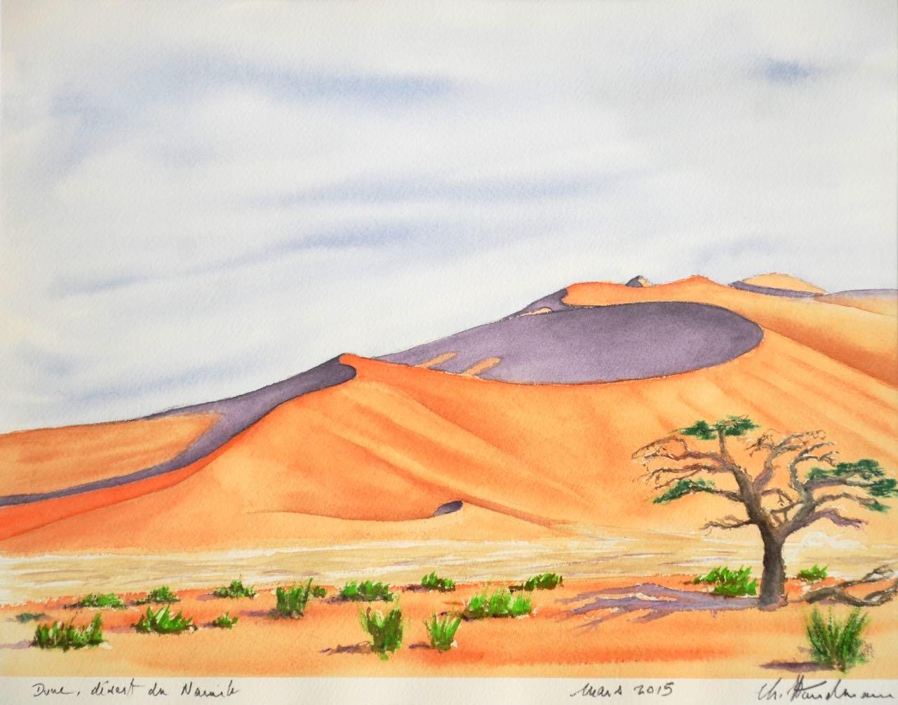 Non disponible / Dune dans le désert du Namib