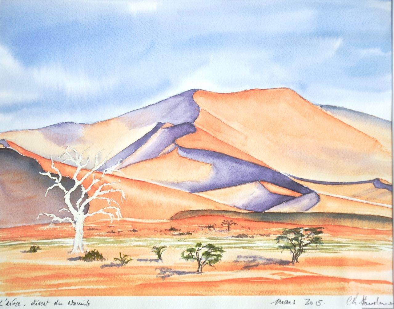 Non disponible / Arbre solitaire, Sossusvlei, désert du Namib