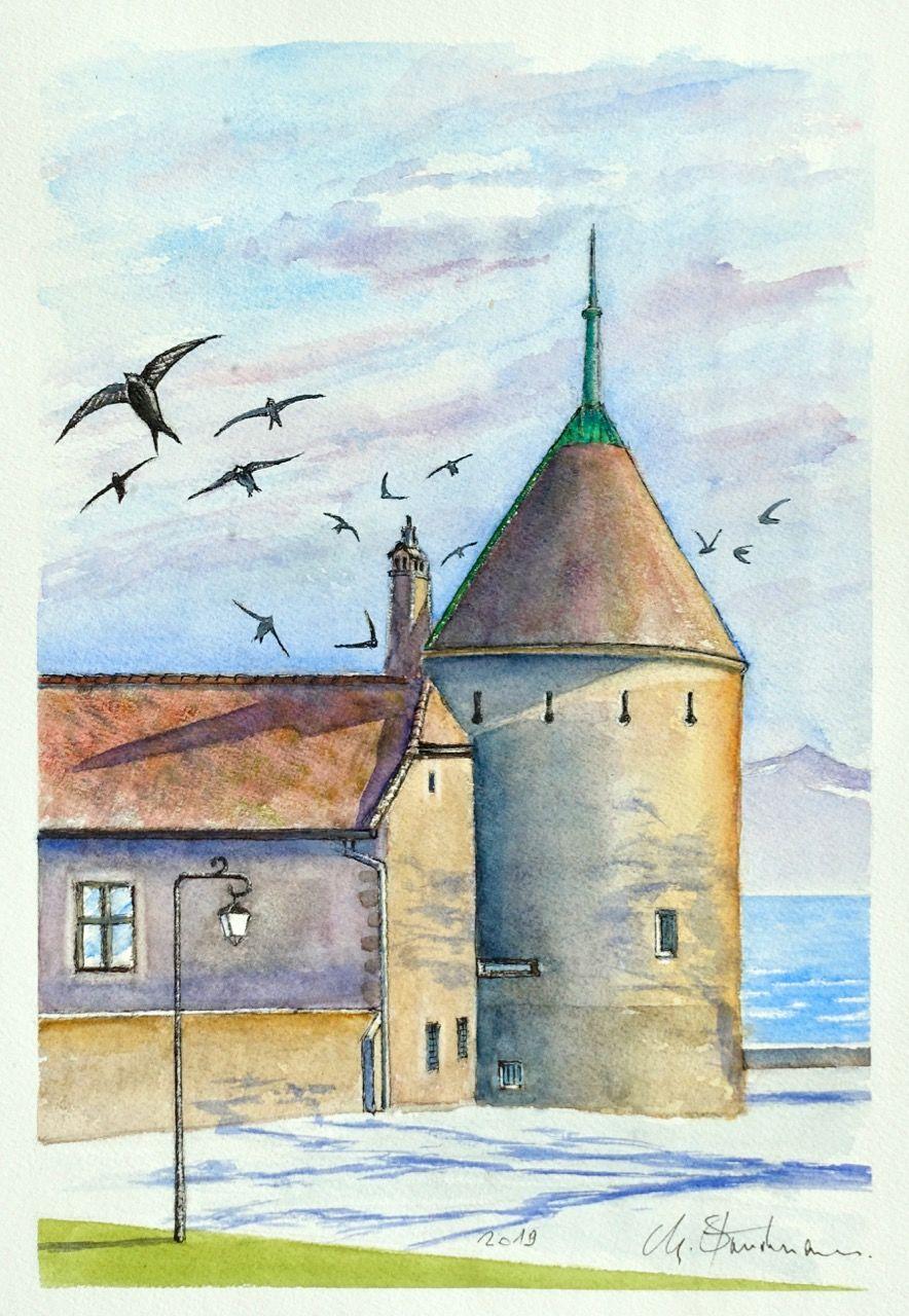 Martinets au château de Rolle
