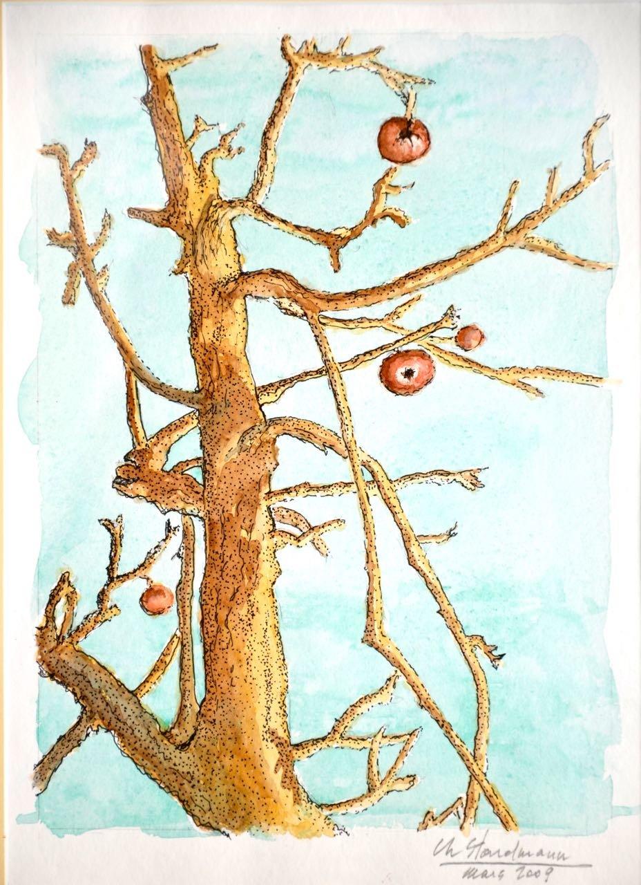 Arbre dénudé en hiver avec des fruits
