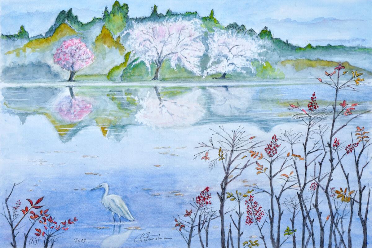 Sakura et Nandina, Japon