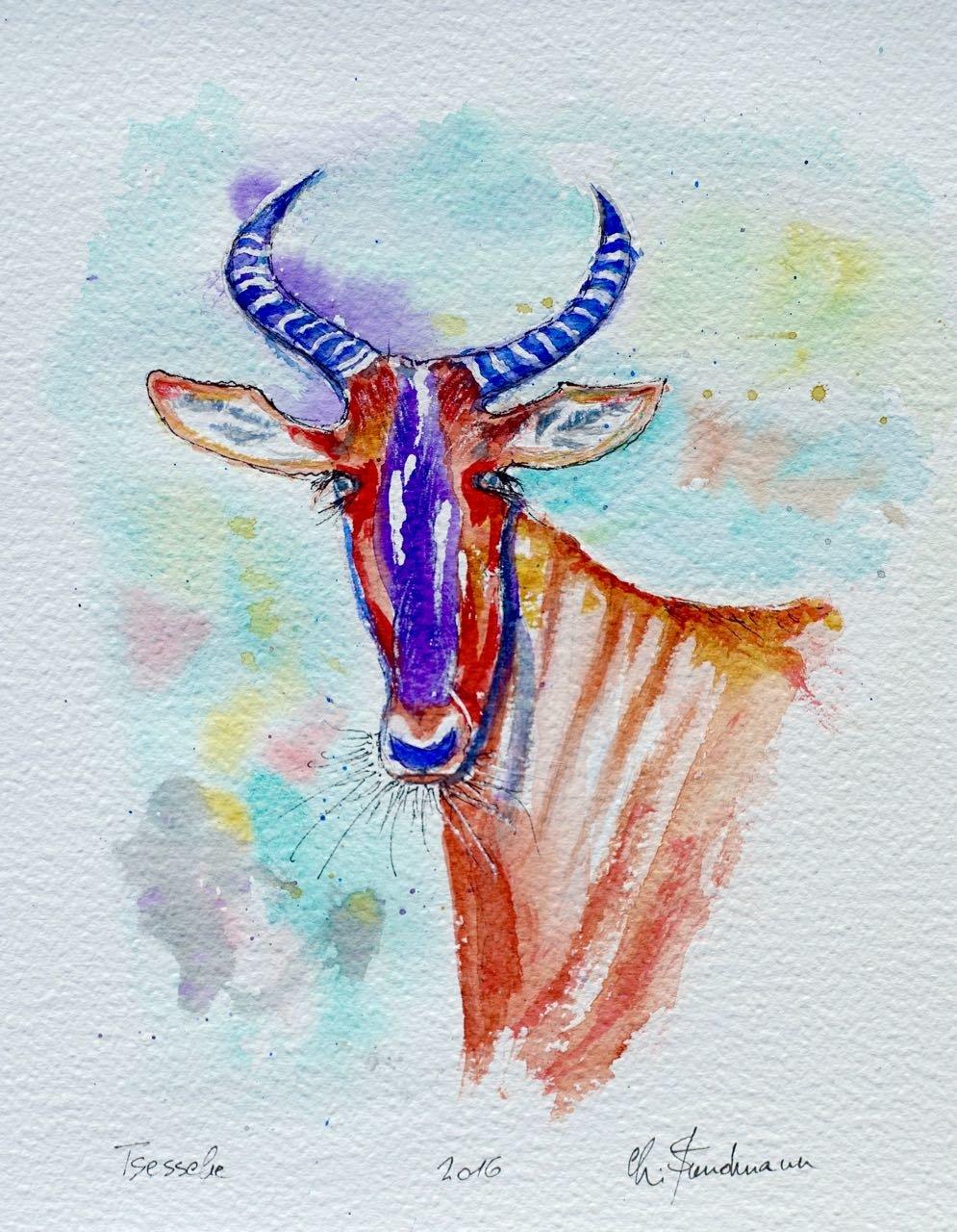 Tsessebe, antilope.