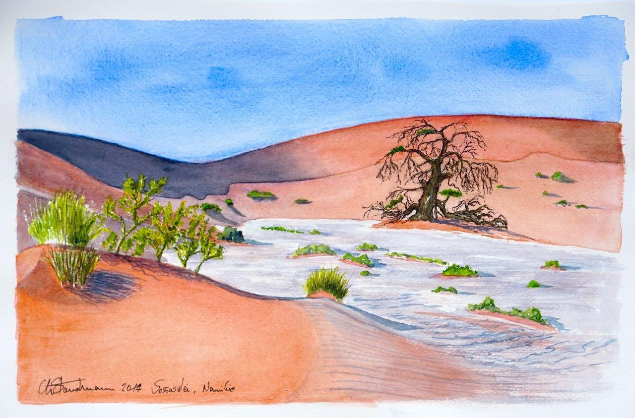 Cours d'eau asséché, désert du Namib