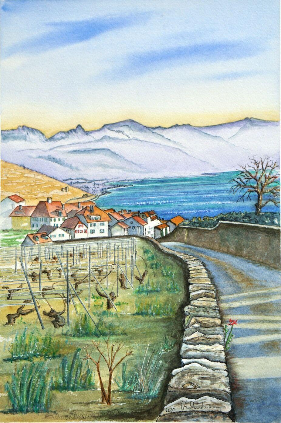 Vue du Lavaux, avec muret (VD)