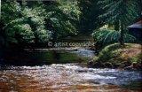 Bow Creek
