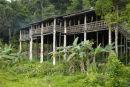 Tribal Longhouse Sarawak Borneo