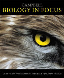 Biology in Focus (Cover)