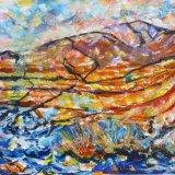 Elan Valley Gors Lwyd bog