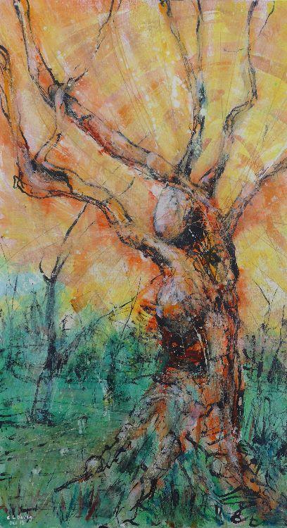 Elan Valley Visitors Centre oak tree