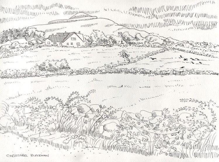 Kinvara Landscape