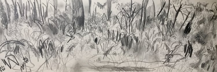 'Arcachon Forest No1' SOLD