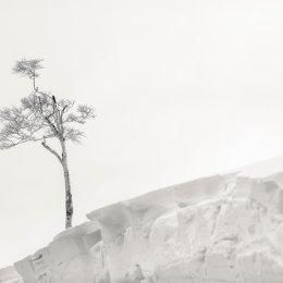 Hokkaido 030