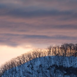 Hokkaido 010