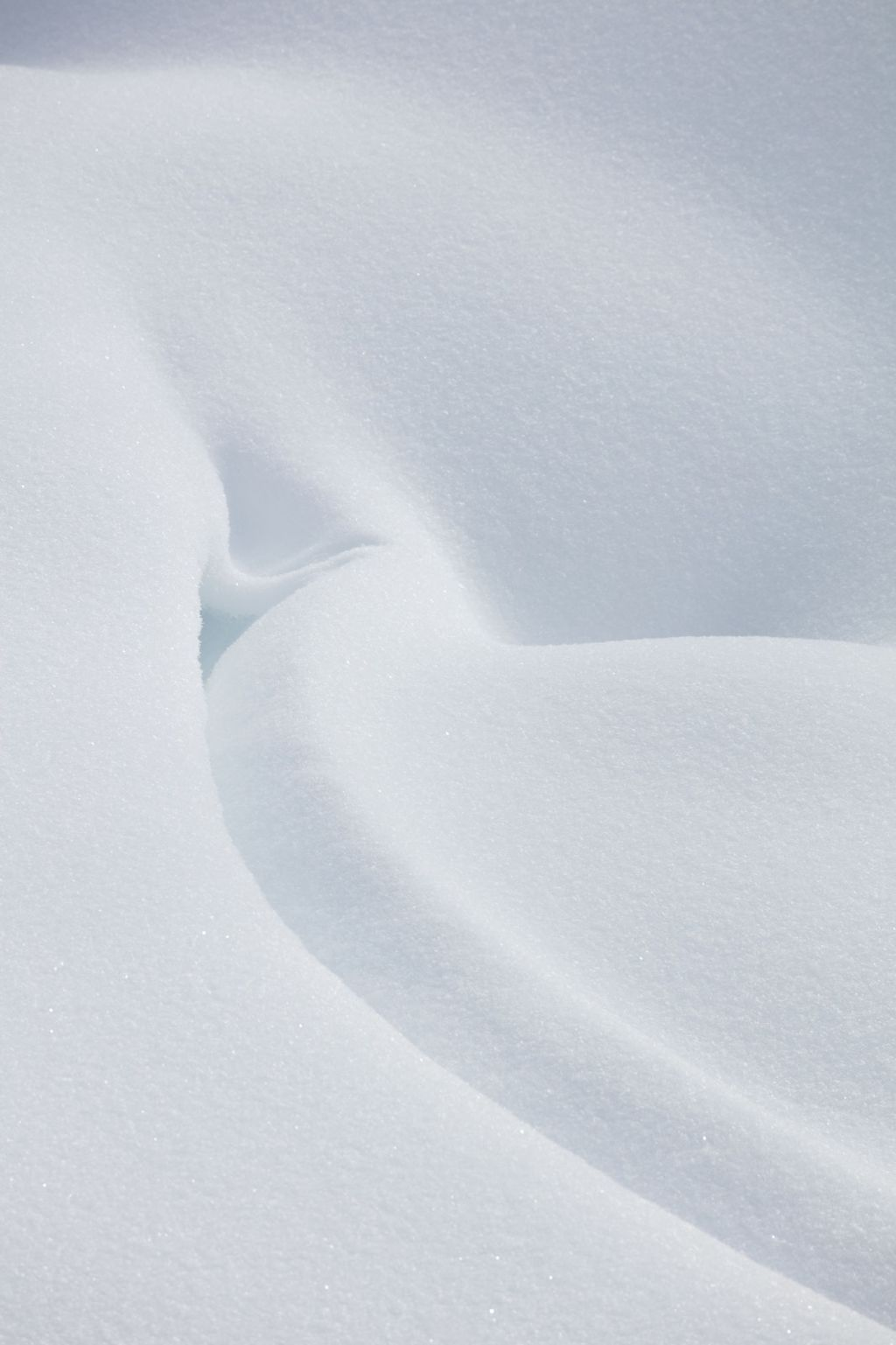 Canadian Rockies 004: snow pattern two