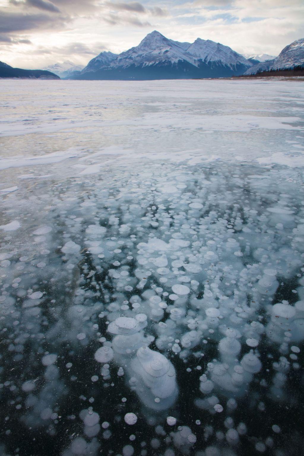 Canadian Rockies 006: lake abraham two