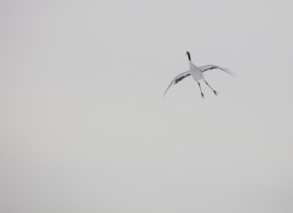 Hokkaido 023