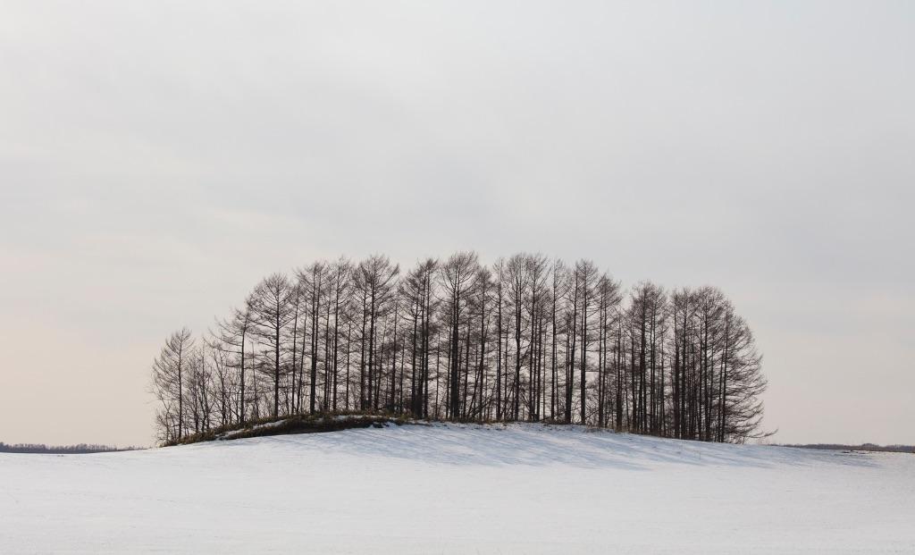 Hokkaido 024