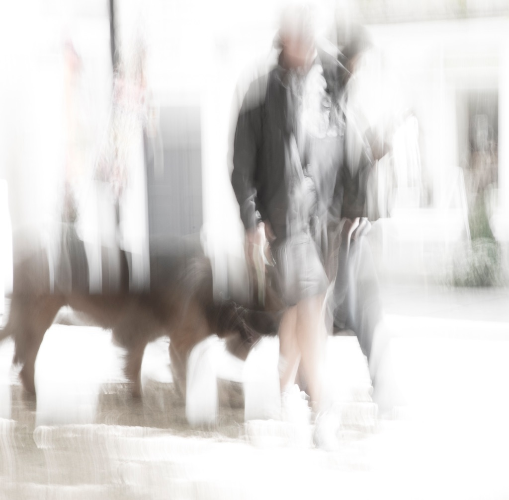 5003 - walking the dog ICM