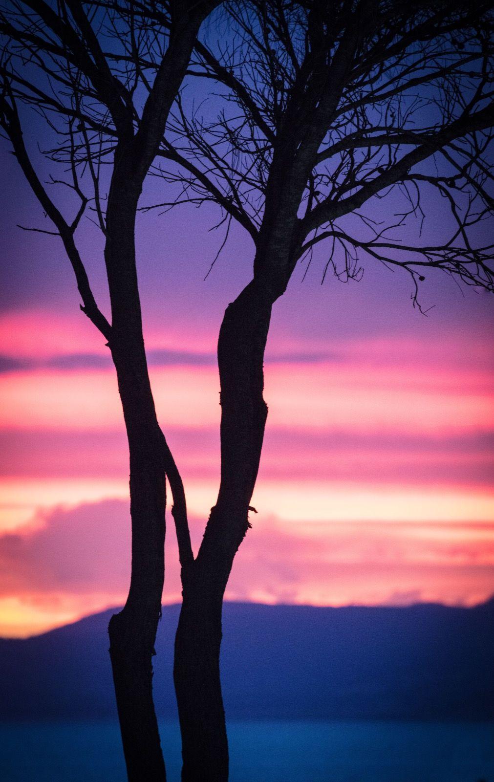 4018 - tasmania sunset